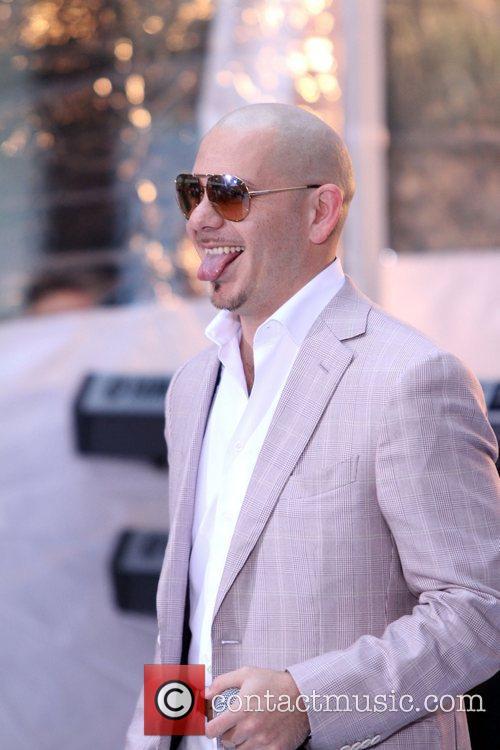 Pitbull 10