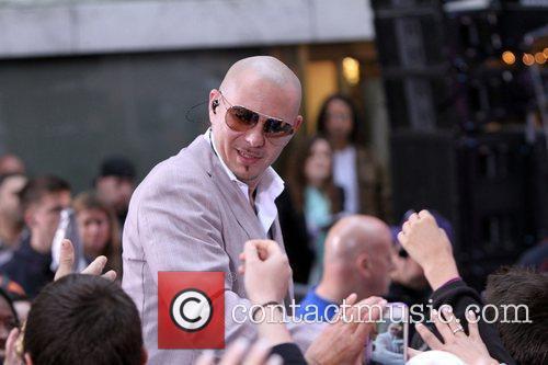 Pitbull 11