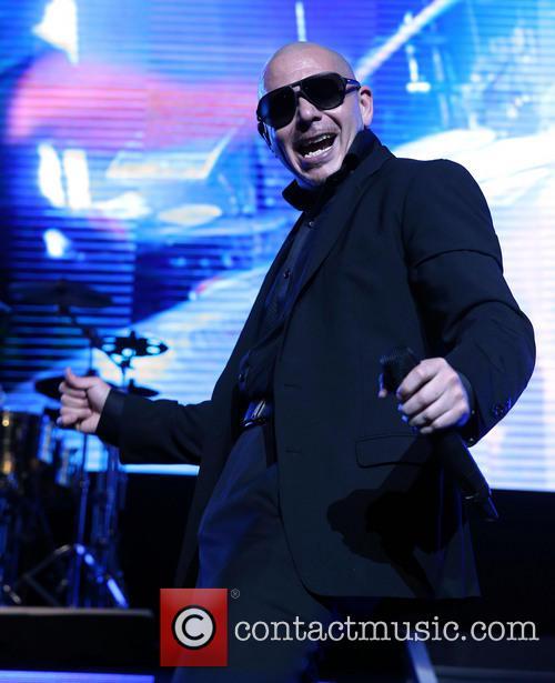 Pitbull 12