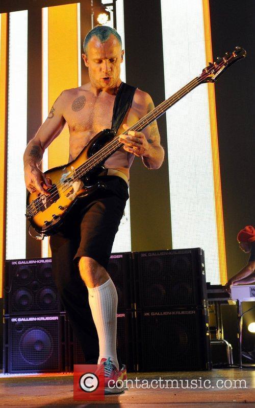 Flea 9