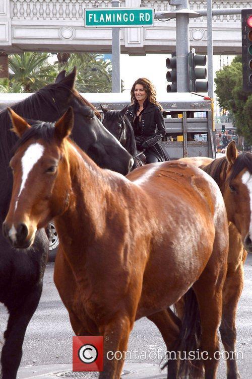 Country, Shania Twain, Las Vegas Strip, December, The Colosseum and Caesars Palace 24
