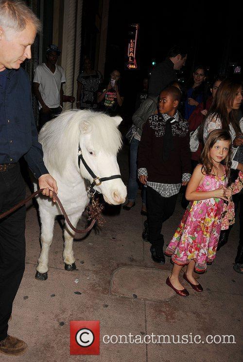Blitzen - The Horse  'A Snow White...