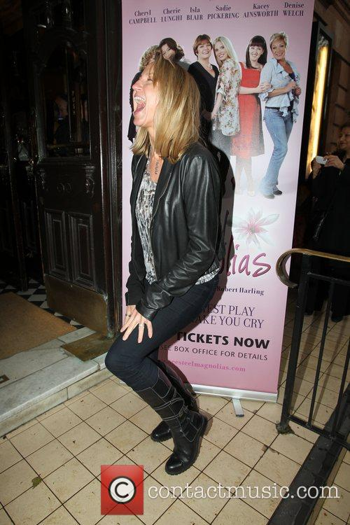 carol mcgiffin the national tour of steel 3882945