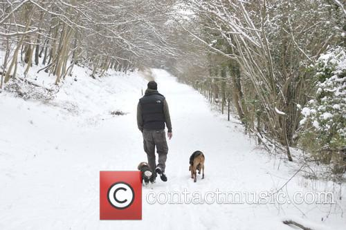 Dog walker taking advantage of the snow