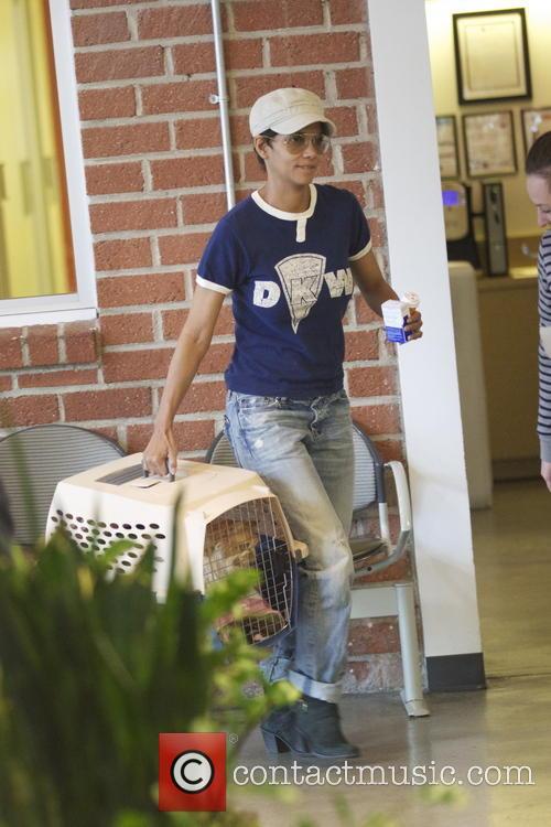 Halle Berry is seen taking her pet cat...