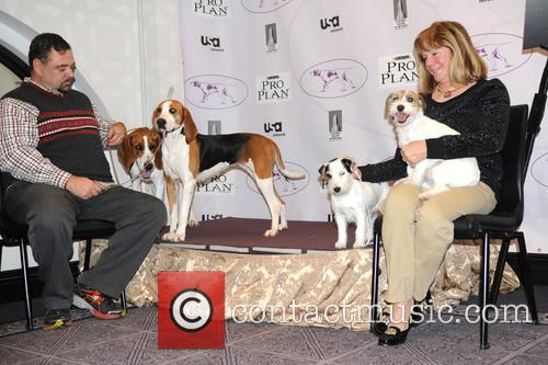 The Westminster Kennel Club and Annual Dog Show 4