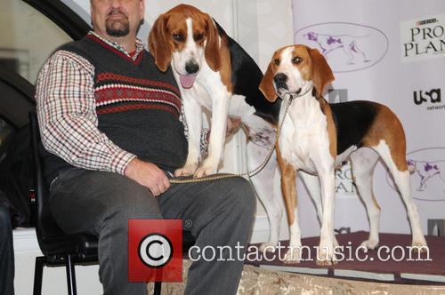 The Westminster Kennel Club and Annual Dog Show 6