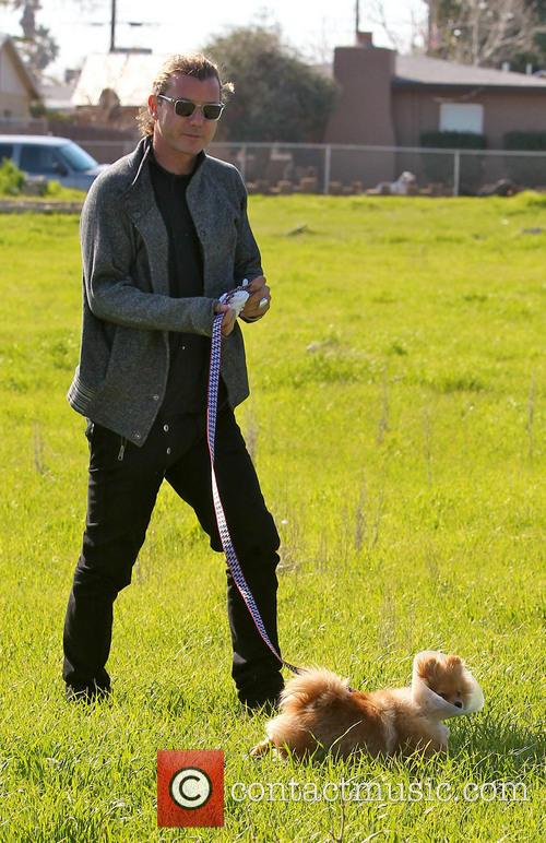 Gavin Rossdale and Dog 7