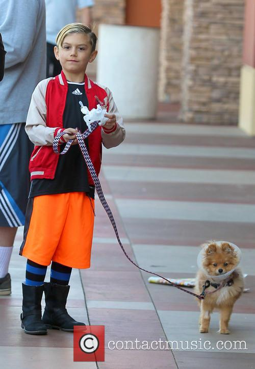 Gwen Stefani, Kingston Rossdale and Dog 3