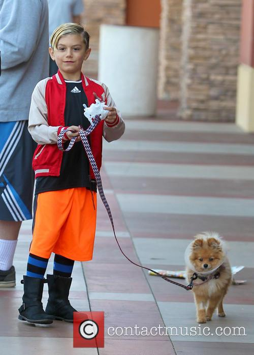 Gwen Stefani, Kingston Rossdale and Dog 4