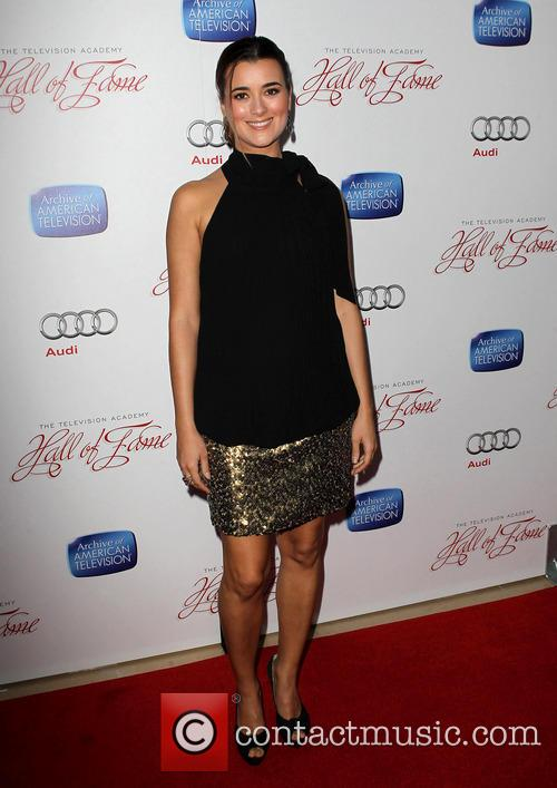 cote de pablo the academy of television 3550640