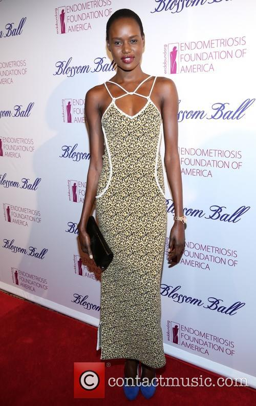 Fifth Annual Blossom Ball To Benefit The Endometriosis Foundation Of America. At Capitale Nyc. 3