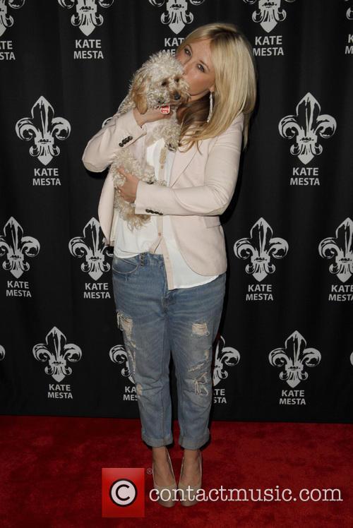 Chelsie Hightower, Scout, CBS Studios