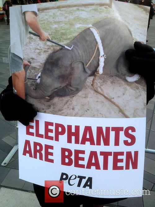 PETA protest the circus