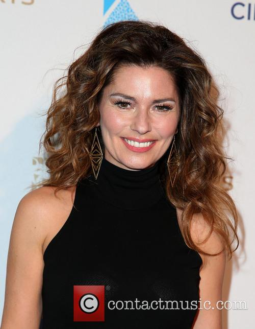 shania twain one night for one drop 3571443
