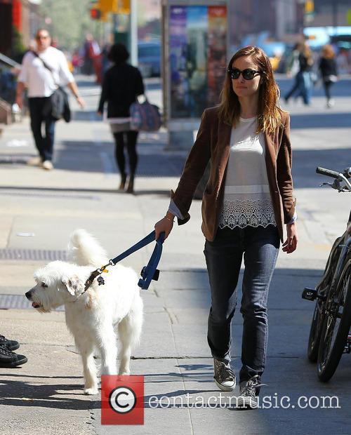 Olivia Wilde walking her dog in West Village