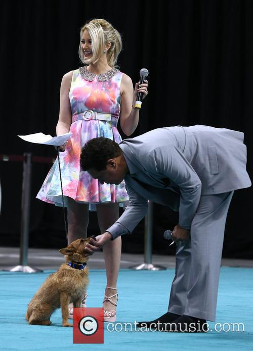 The Animal Foundation's, Best In Show, Anniversary, Zappos and The Orleans Arena 5