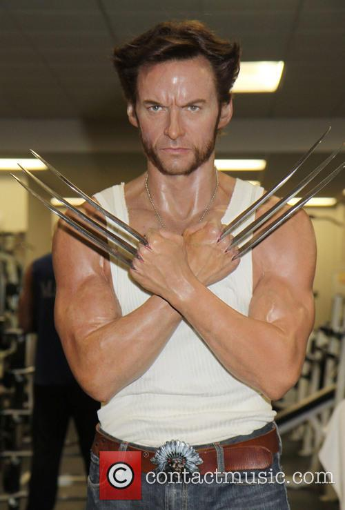 Hugh Jackman's Wolverine wax figure works out sweating...