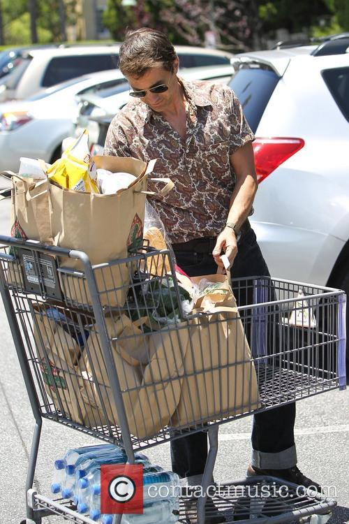 Halle Berry and Olivier Martinez seen grocery shopping