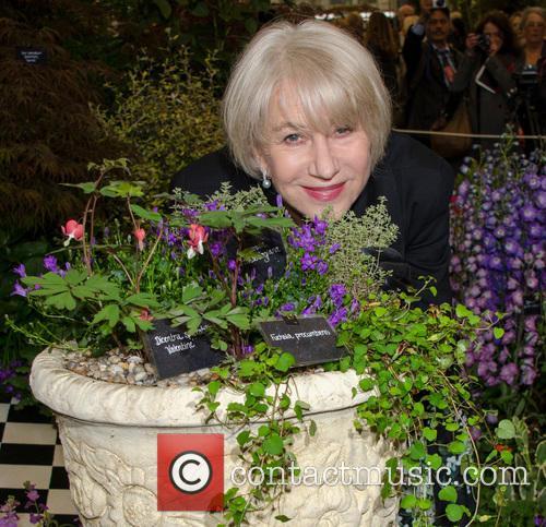 helen mirren rhs chelsea flower show 2013 3678351
