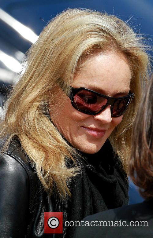 Sharon Stone, Cannes Films Festival, Cannes Film Festival