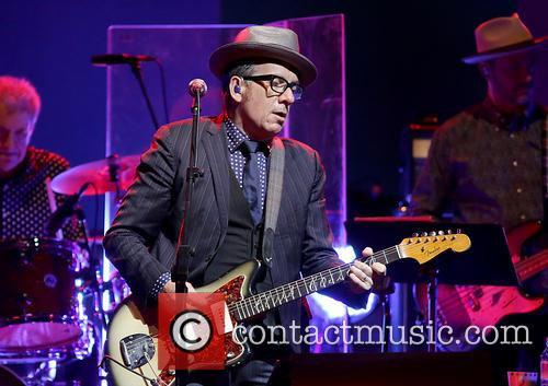Elvis Costello 31