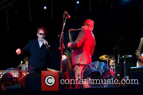 madness madness performs chepstow 3720815