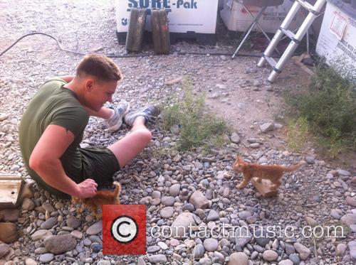 US Marine Worker Rabbit Rescue