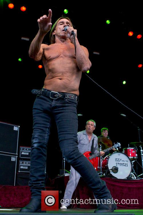 Iggy & The Stooges and Iggy Pop 5