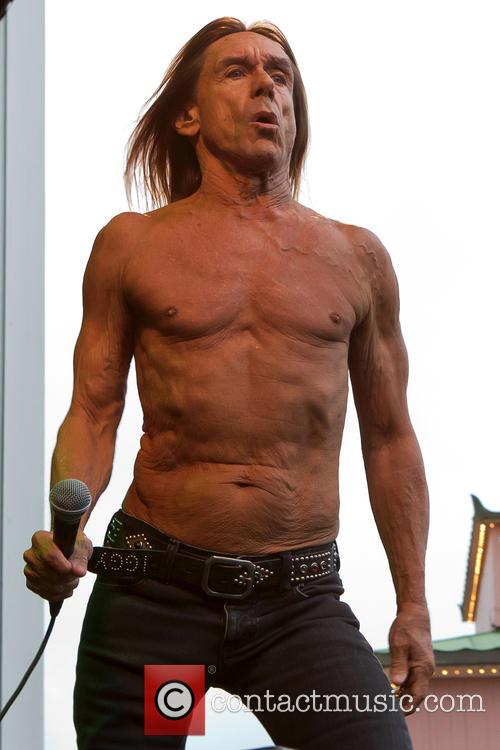 Iggy & The Stooges and Iggy Pop 6