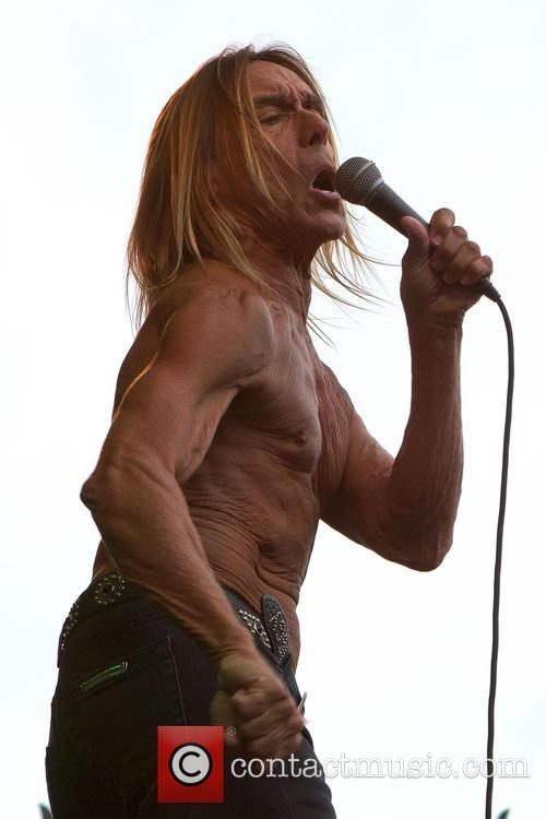 Iggy & The Stooges and Iggy Pop 7