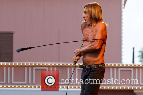 Iggy & The Stooges and Iggy Pop 8