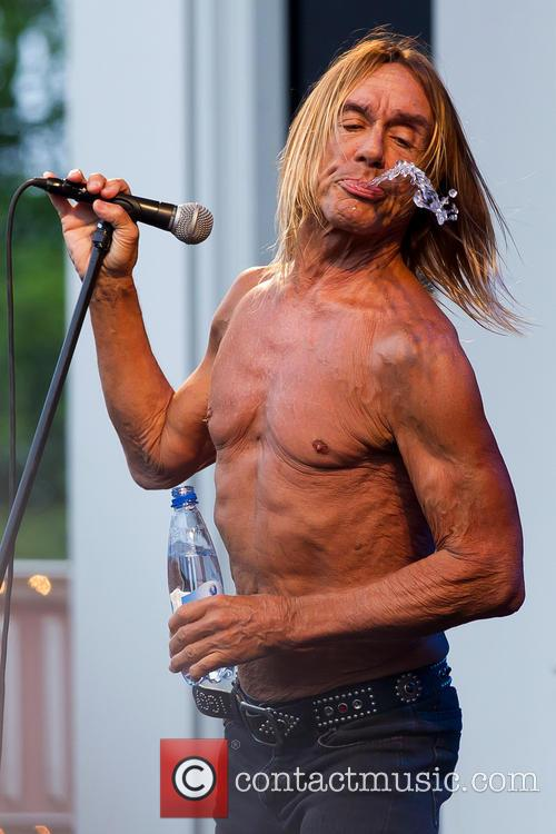 Iggy & The Stooges and Iggy Pop 10