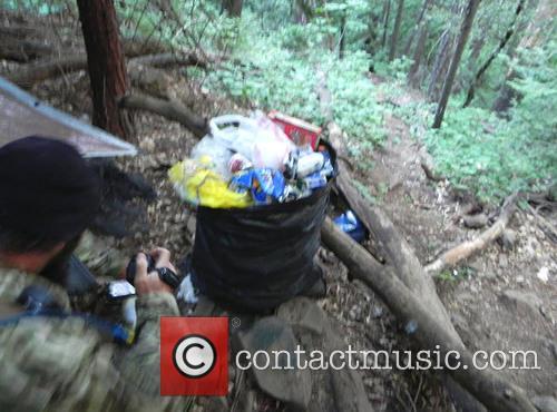 Marijuana Forest Man Arrested