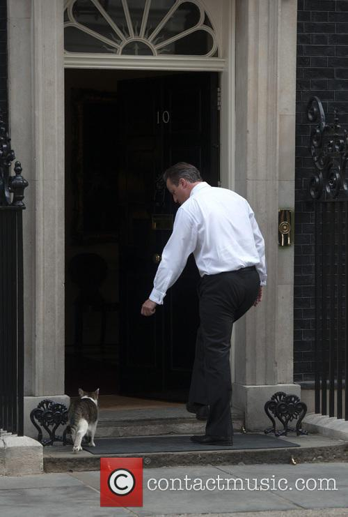 David Cameron and Larry The Cat 8