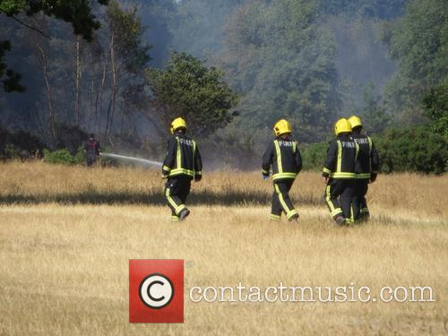 Forest Fire and Firemen 9