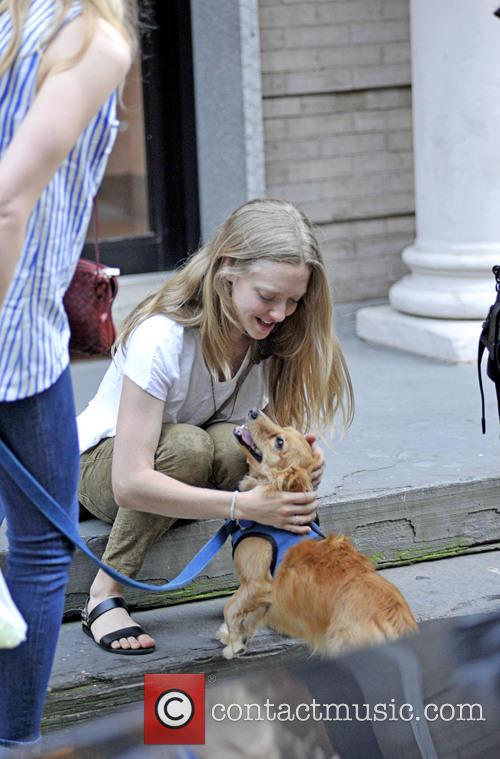 Amanda Seyfried seen petting a friends dog