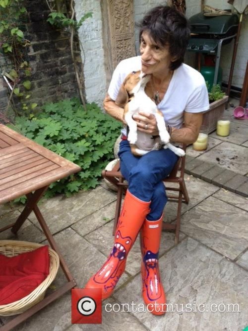 Ronnie Wood, Orange Wellies and Wellington Boots 1