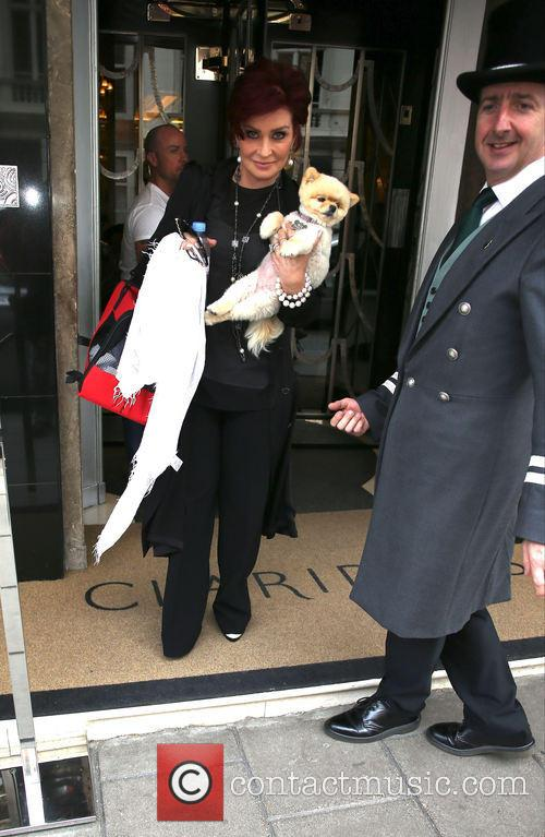 sharon osbourne sharon osbourne and her dog 3807165