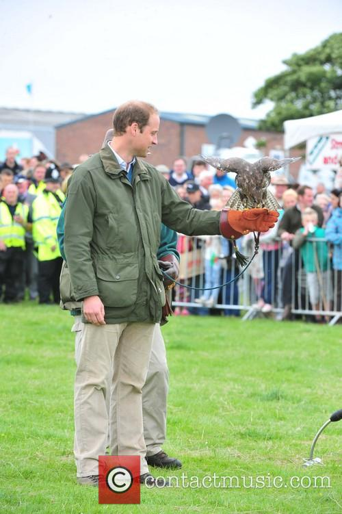 Prince William at the Anglesey show in Wales