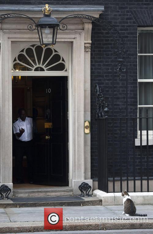 Larry the Downing Street cat outside number 10