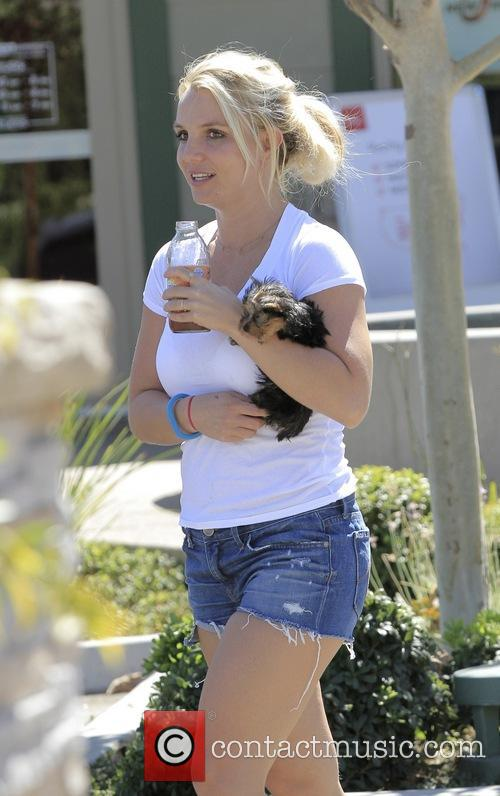 Britney Spears, Calabasas, California
