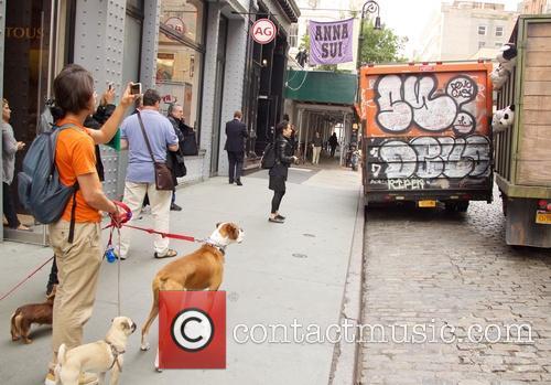 Banksy Meat Truck
