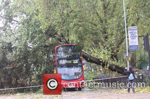 Tree Crashes On Bus 2
