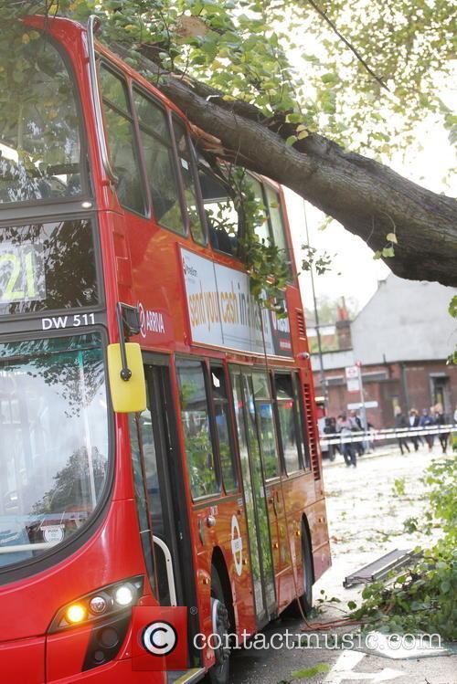 Tree Crashes On Bus 7