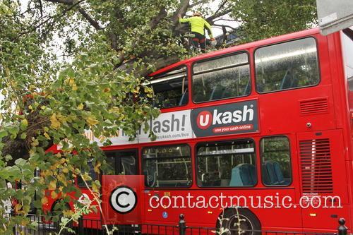 Tree Crashes On Bus 8