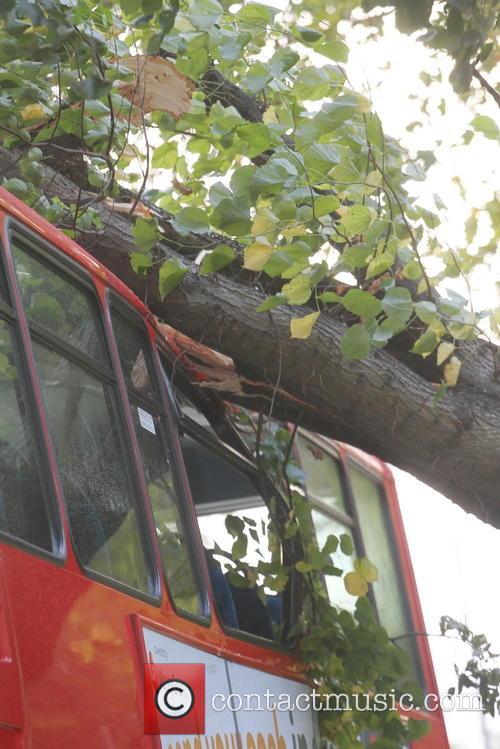 Tree Crashes On Bus 9