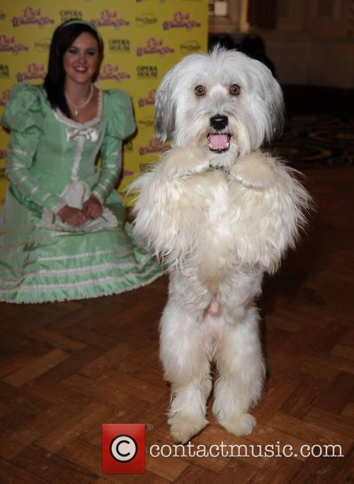 Ashleigh Butler and Pudsey The Dog 2