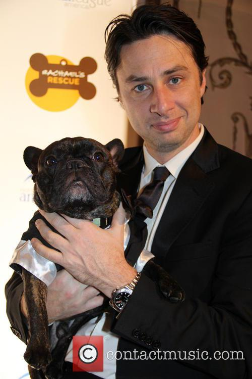 zach braff the animal league america celebrity 3968158