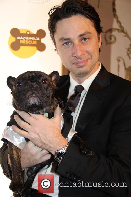 Zach Braff at The Animal League America Celebrity Gala